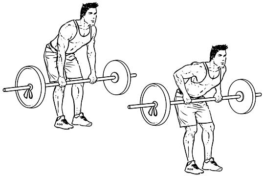 Scapular Retraction: Exercises, Benefits, & Proper Form