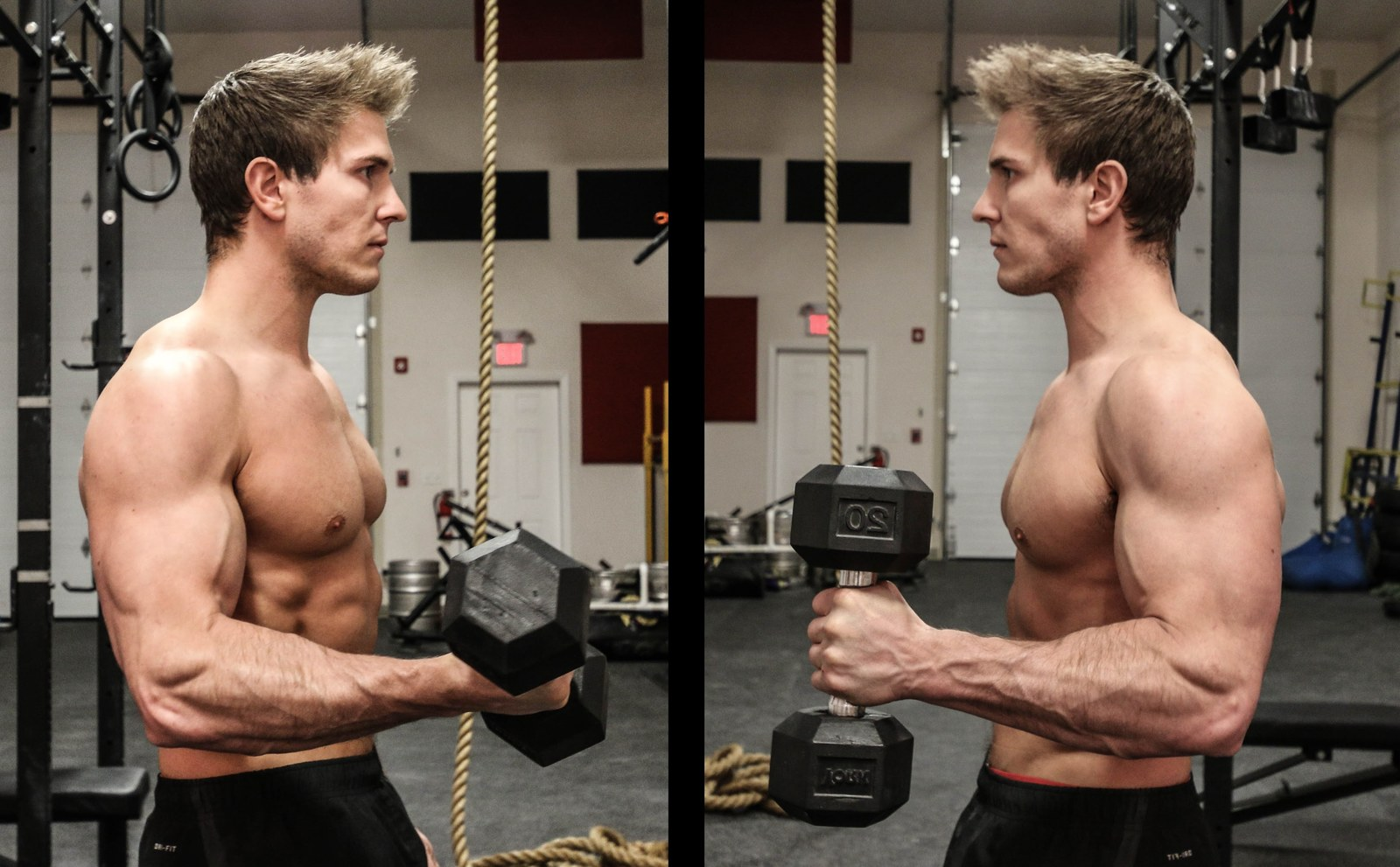 Hammer Curls Vs Bicep Curls Is One Better Than The Other