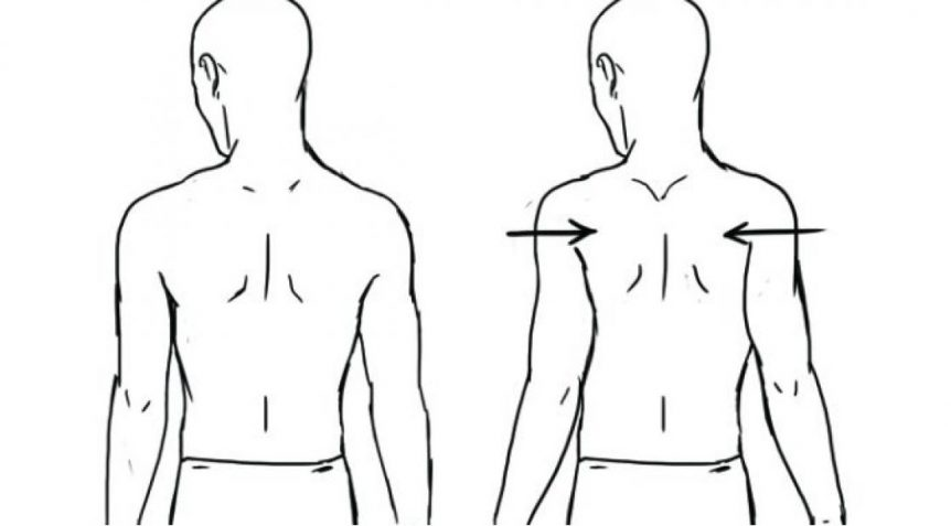 Drawing of scapular retraction