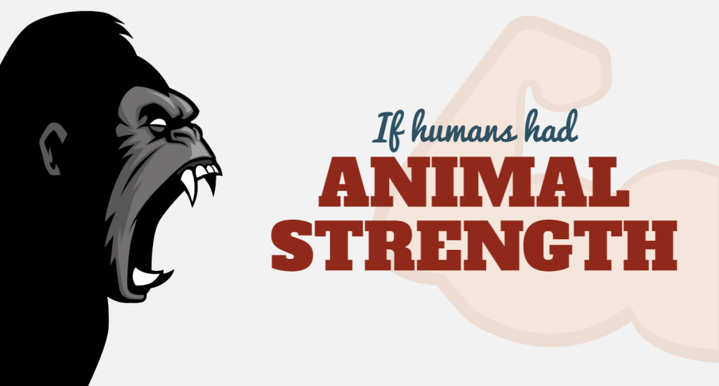 Humans vs Animals Cover