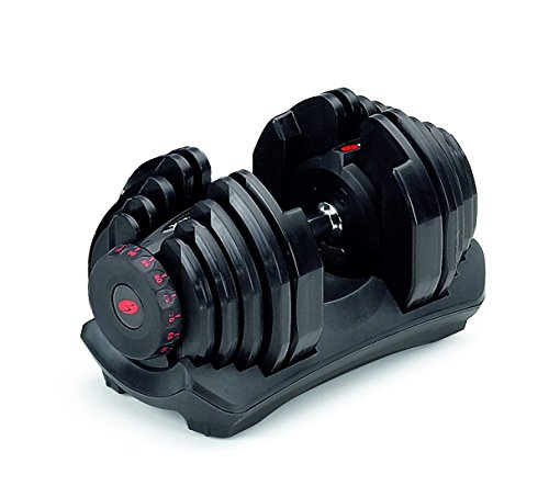 Image of the Bowflex SelectTech 1090 Adjustable Dumbbell (Single)