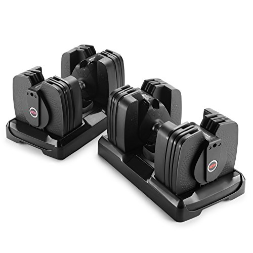 Image of the Bowflex SelectTech 560 Dumbbell (Pair)